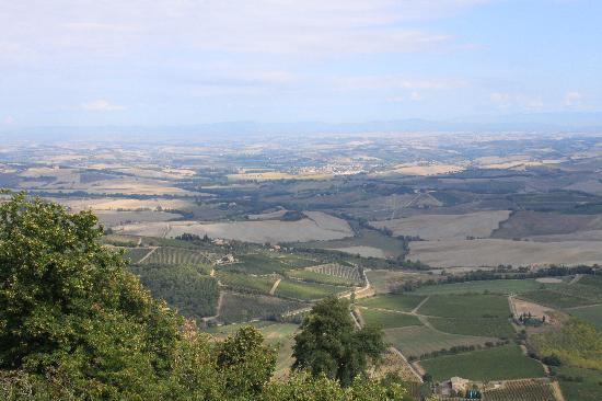 Montalcino, Italy: Tuscan country side