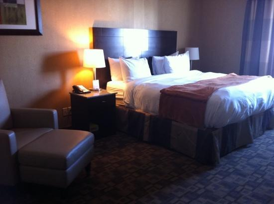 BEST WESTERN PLUS South Edmonton Inn & Suites: clean and spacious
