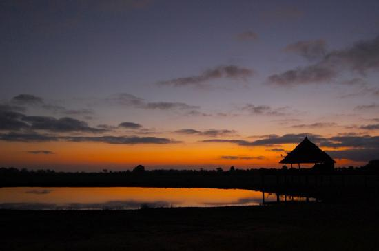 Turtle Bay Beach Club: Sunrise on Safari