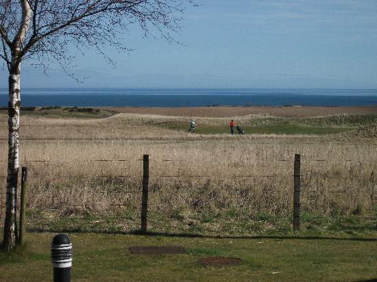 Balmashie Premier Holiday Cottages: The lovely view.