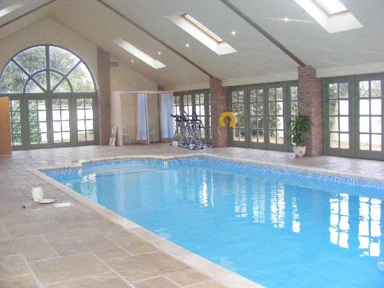 Mm and foal picture of arran house stud farm newmarket tripadvisor Red house hotel swimming pool