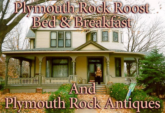 Plymouth Rock Roost