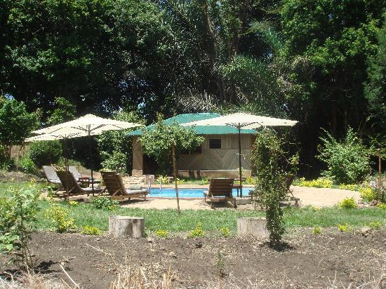 Meru National Park, : piscine