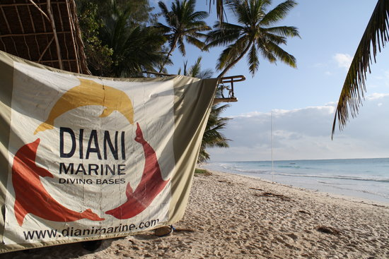 ‪Diani Marine Divers Village‬