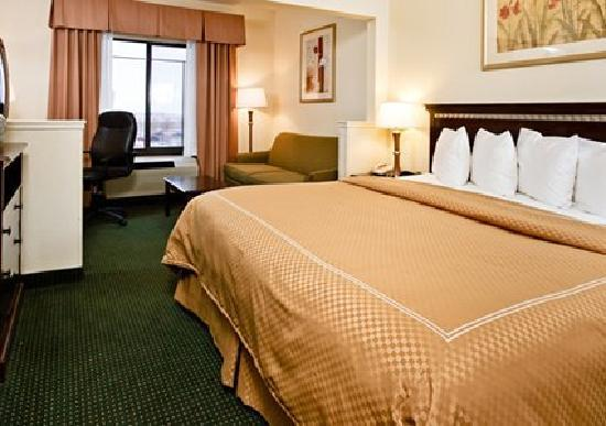 Comfort Suites Denver International Airport: One King Bed Suite