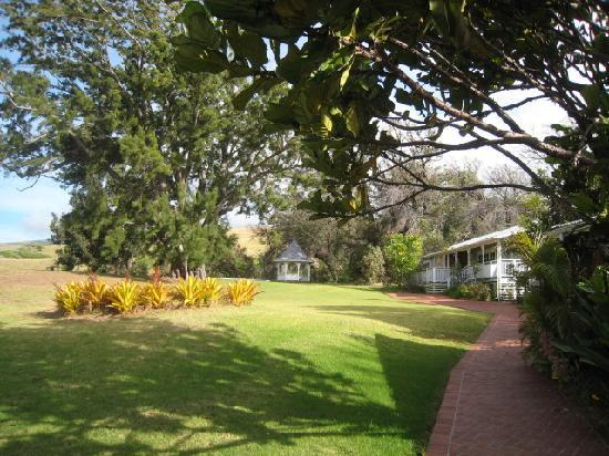 Jacaranda Inn: Gazebo in Back Yard