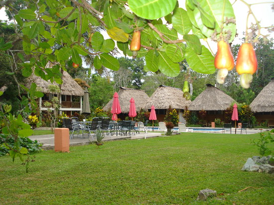Photo of Hotel Tikal Inn Tikal National Park