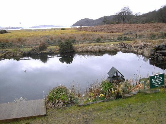 Tralee Bay Holiday Park: the wee pond