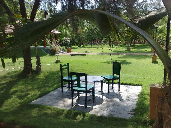 Kailash Beach Resort: Te garden