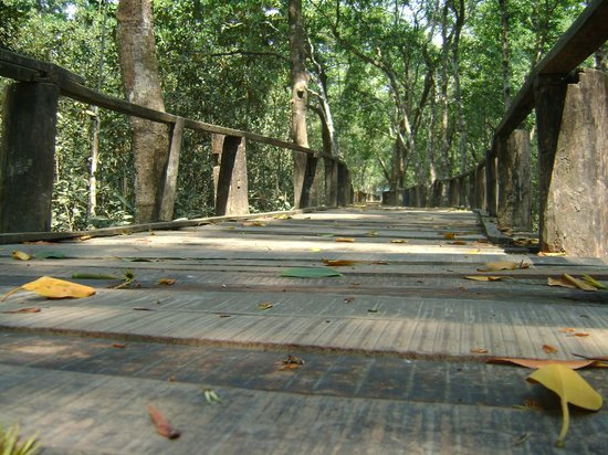 Bangladesh: Wooden bridge at the outskirt of Sunderban