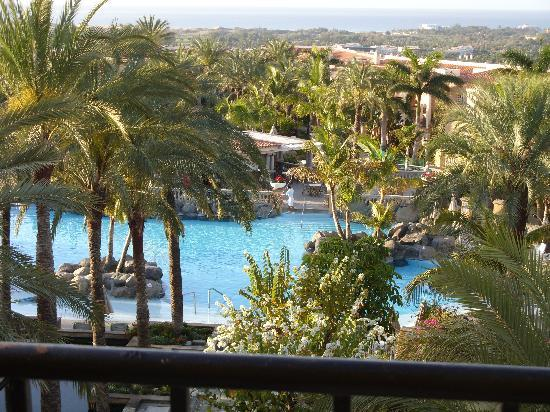 Palm Oasis: View from our room