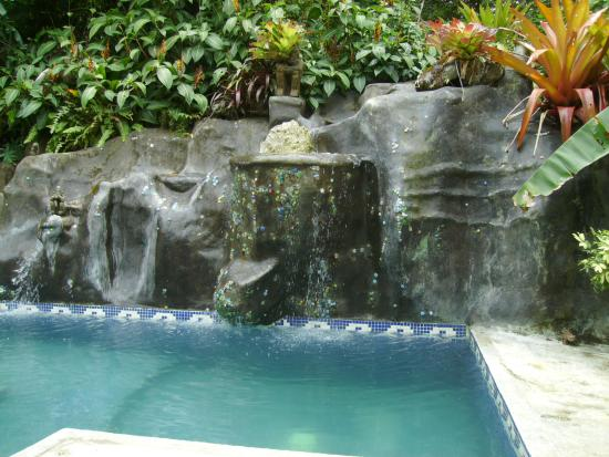 Cashew Hill Jungle Cottages: Jungle Pool