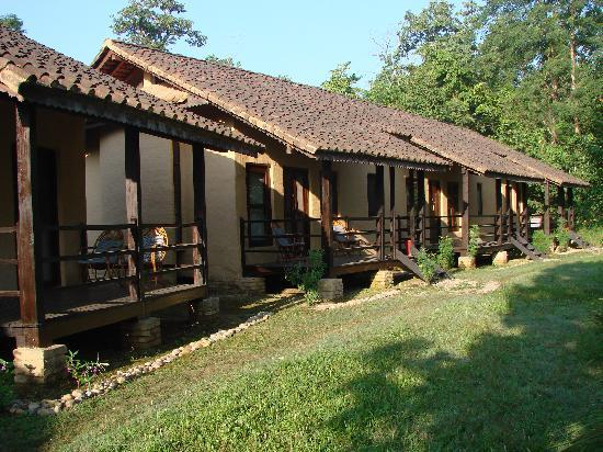alojamientos bed and breakfasts en Bardia National Park 