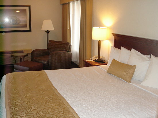 BEST WESTERN PLUS Inn of Hayward: delux room