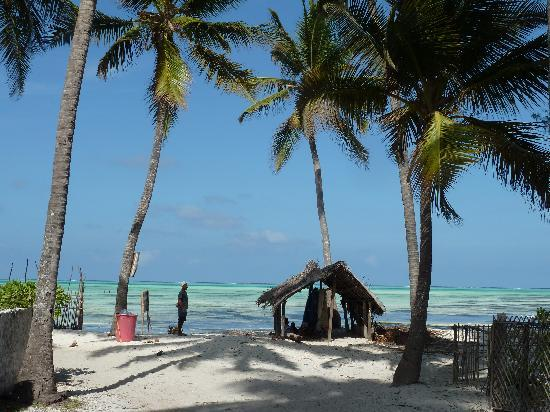 Stone Town, Tanzania: Beach