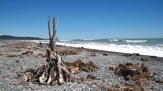 Fox Glacier, New Zealand: Gillespie beach