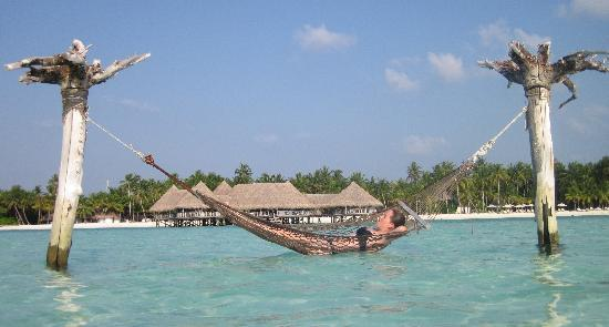 Gili Lankanfushi Maldives: Hammock in the ocean