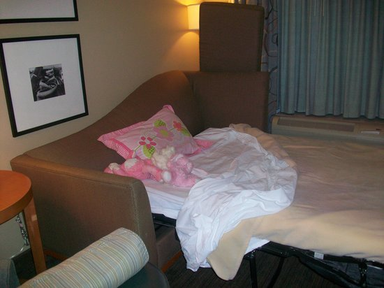 Hampton Inn & Suites St. Louis at Forest Park: The pull out couch