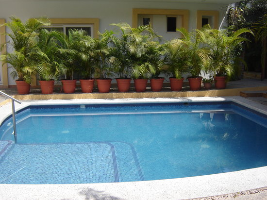 Hacienda Alemana: The pool