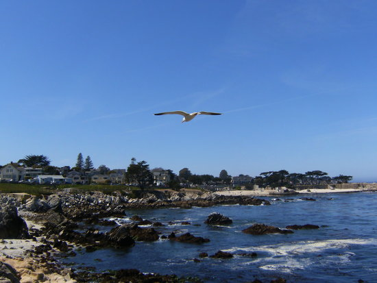 Monterey Bay - La costa a sud di Monterey