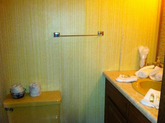 Stone's Lodge under Stratton Mtn.: Bathroom with stall shower (not shown)