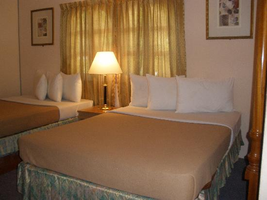 alojamientos bed and breakfasts en Janda Baik