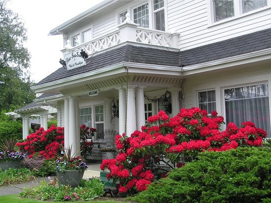 Five SeaSuns Bed and Breakfast: You&#39;ll always feel at home at Five SeaSuns