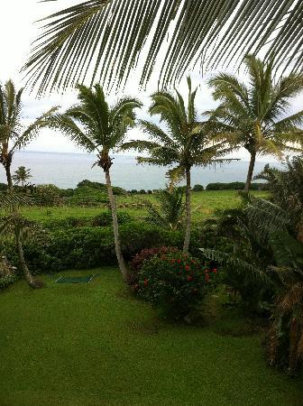 Paia, HI: Our view from the deck