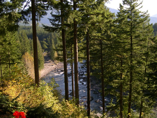 "The Roaring River Bed & Breakfast: ""View Of The Snoqualmie River """