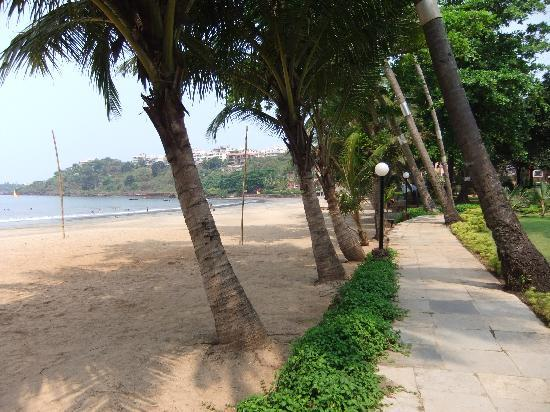 Vainguinim, India: Beach 2 mins walk