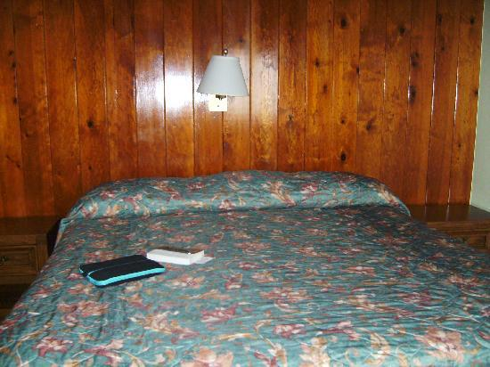 Timbers Motel: Timbers-Queen sized bed view