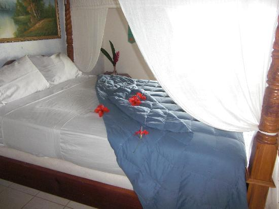 Isla Solarte, Panama: Bed and View