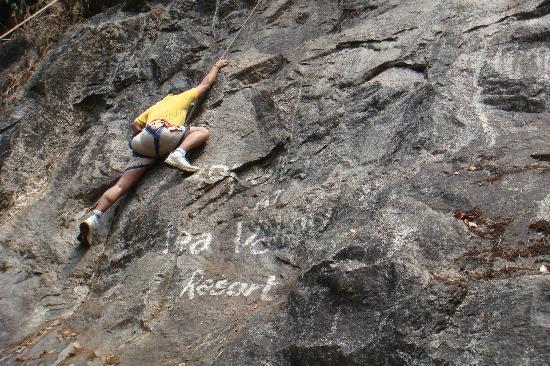 Tea Valley Resort: The rock climbing