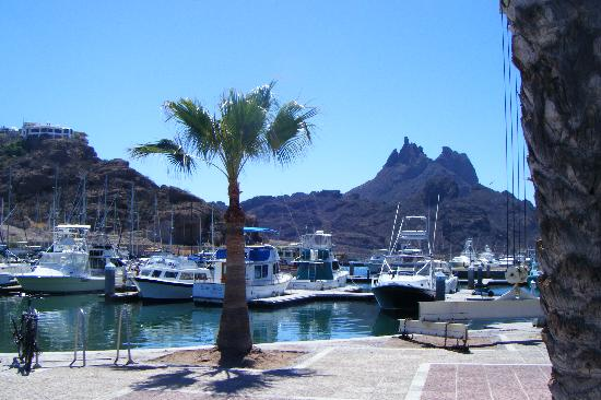 Posada del Desierto: A picture of the harbour in San Carlos