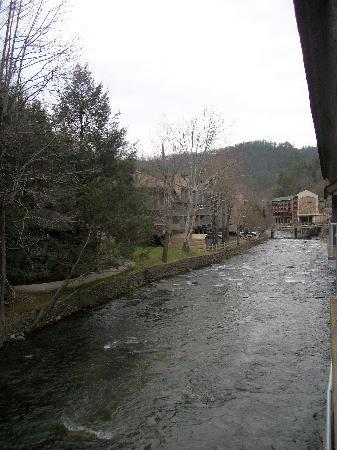 Rocky Waters Motor Inn: Another View