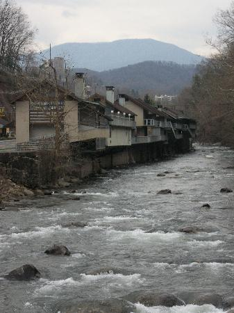 Rocky Waters Motor Inn: Hotel with mountains in background