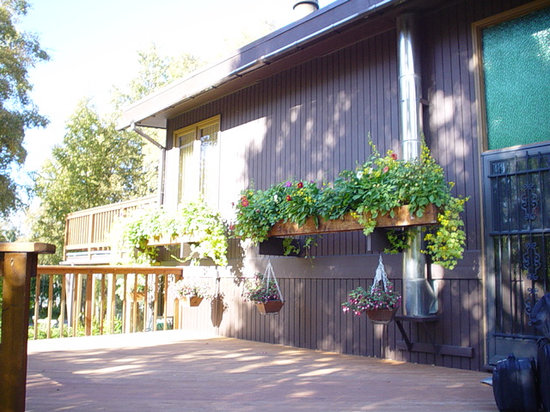 Jarvi Homestay B&B