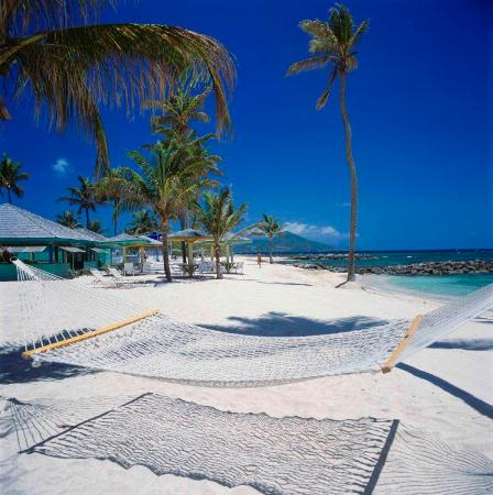 Nisbet Plantation Beach Club: Relax in a beach hammock