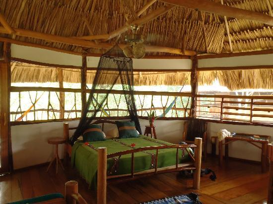 Cotton Tree Lodge: Inside of a sleeping cabana