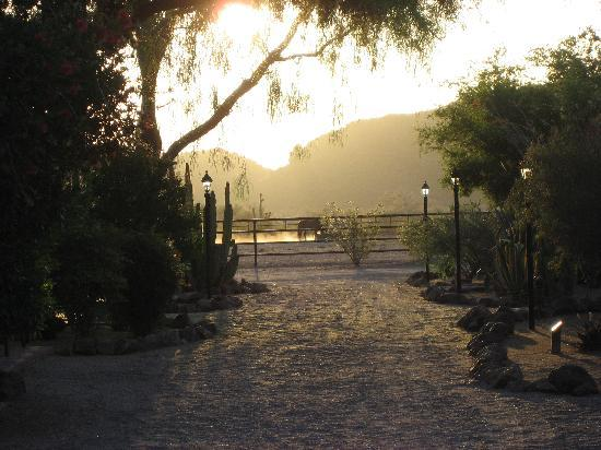 White Stallion Ranch: Daybreak over east corral