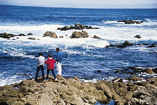 Monterey Peninsula, CA: Monterey County Convention & Visitors Bureau