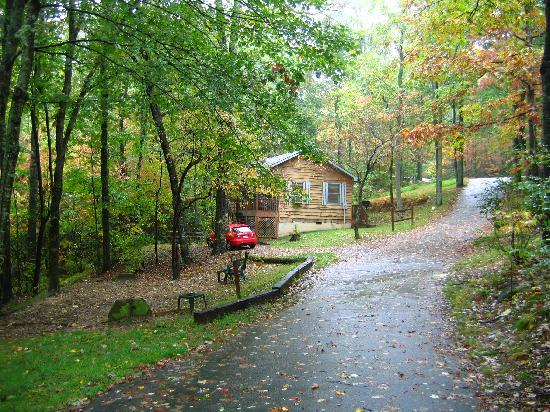 Ash Grove Resort Cabins & Camping: lovely and peaceful