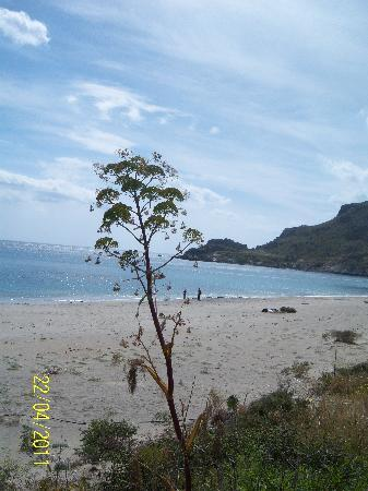 Plakias, Greece: DAMNONI BEACH