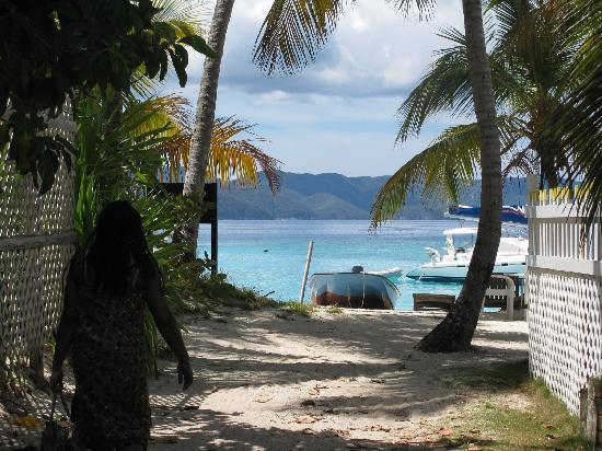Perfect Pineapple Guest Houses: The very short walk from PP to White Bay