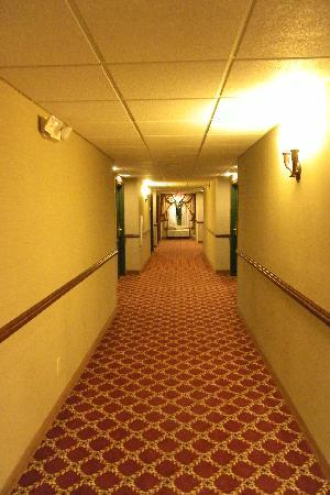 Country Inn & Suites Woodbridge: Quiet hallways