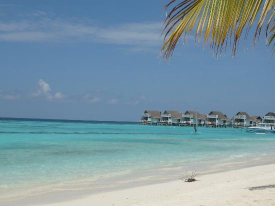 Centara Grand Island Resort & Spa Maldives: view from lounger on beach suite