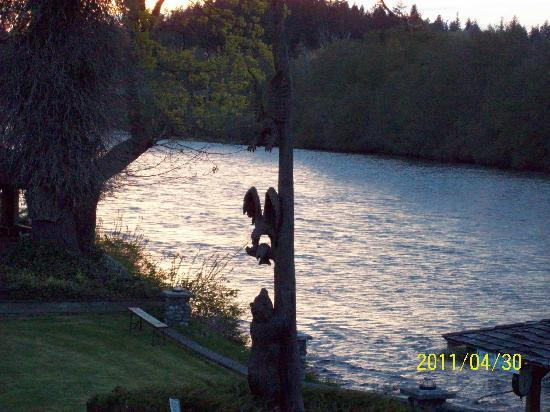 Campbell River Lodge, Inn: Totom Pole in back yard