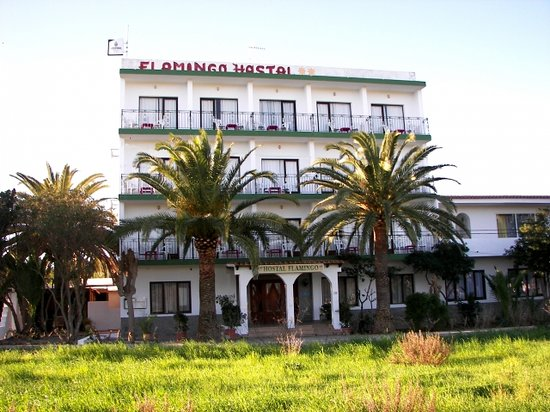 Photo of Hostal Flamingo Es Cana