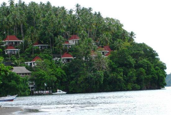 Dabirahe at Lembeh Hills Resort: hanging villas of LHR