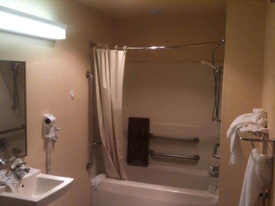 Microtel Inn by Wyndham Staunton: bathroom